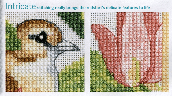 Detail of Redstarts and magnolias cross stitch